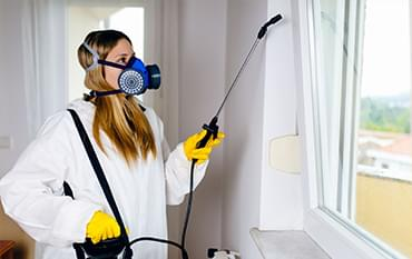 Pest removal services Edmonton
